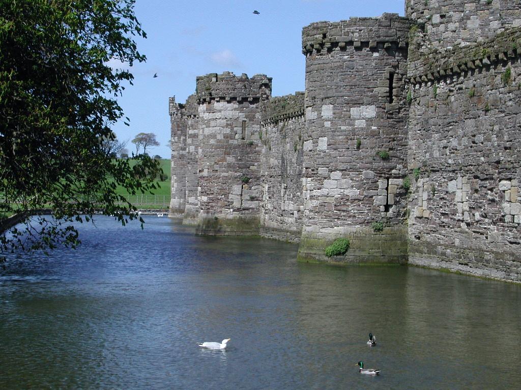 essays on the last king of scotland